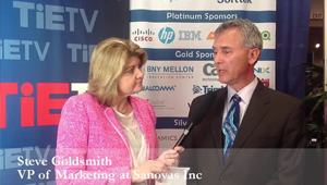 Sandy Carter, IBM Interview with Steve Goldsmith